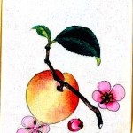 Art - Asian - Botanical - fruit - peach 2