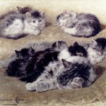 Art - Drawing - Animal - Cat - Knip