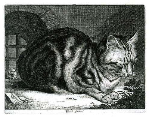 Art - Engraving - Animal - Cat - The Large Cat