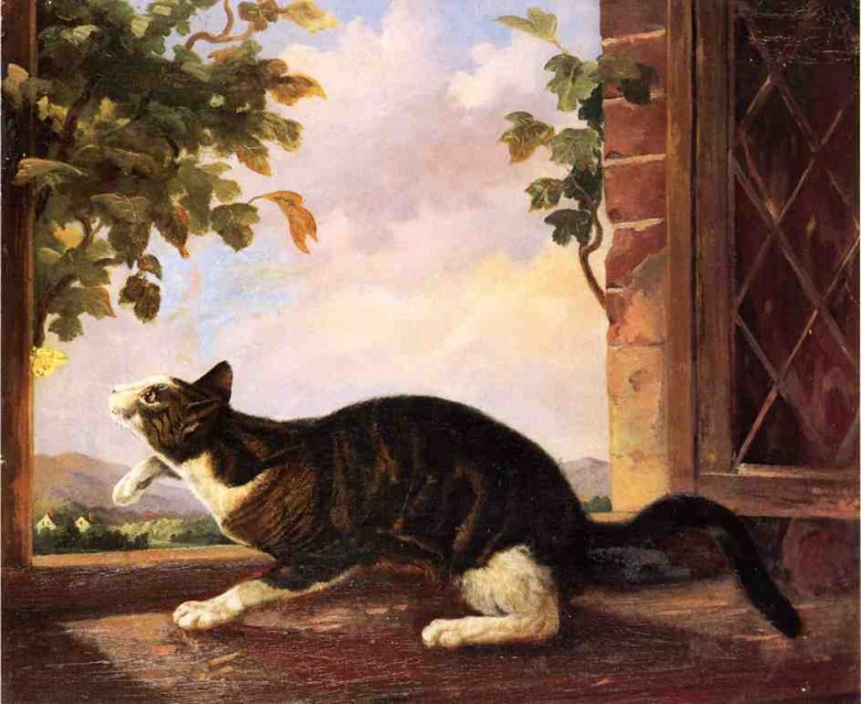Art - Painting - Animal - Cat - Cat stalking a butterfly