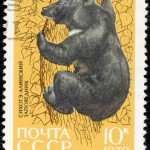 Art - Stamp Art - Animal - Russia -  Bear