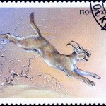 Art - Stamp Art - Animal - Russia - Bobcat - Каракал