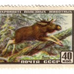 Art - Stamp Art - Animal - Russia - Moose