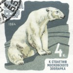 Art - Stamp Art - Animal - Russia - Polar Bear