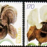 Art - Stamp Art - Armenia - Flower - Iris