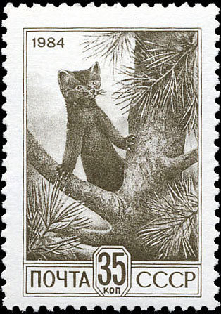 Art - Stamp Art - Russia - Animal - Woodland - Sable