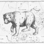 Astronomy - Map - Ursa_Major - Hevelius