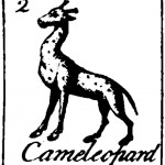 Black and white - graphic - Camelleopard