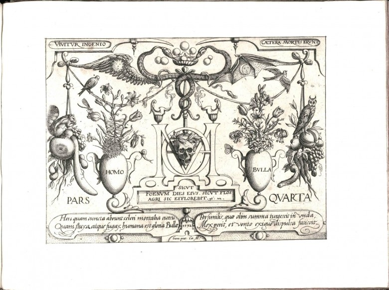 Botanical - Black and white - Decorative Panel (2)