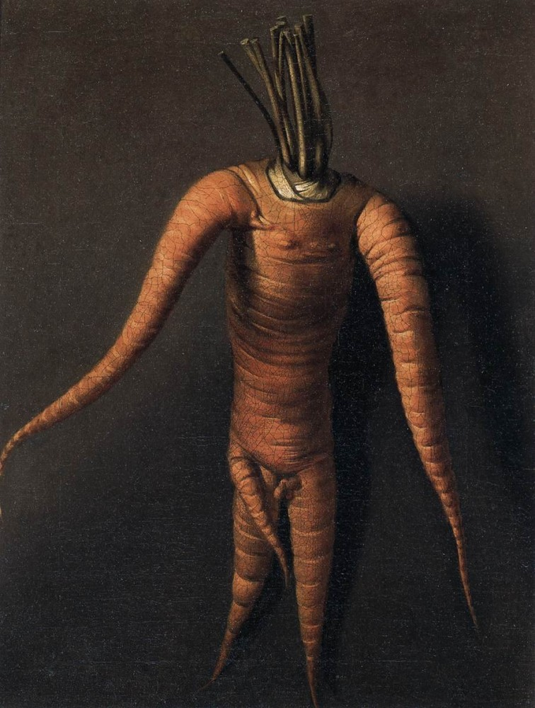 Botanical - Carrot - Art - Anthropomorphized Carrot 1699