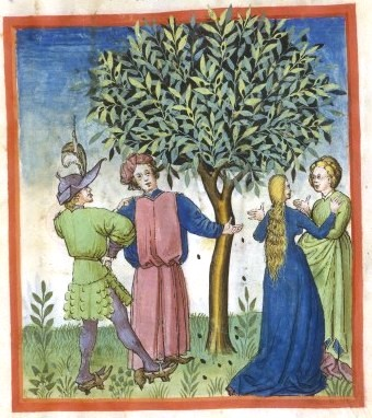 Botanical - Medieval -  Horticultural practices -  (10)