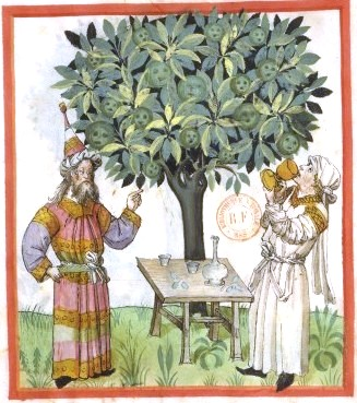 Botanical - Medieval -  Horticultural practices -  (13)
