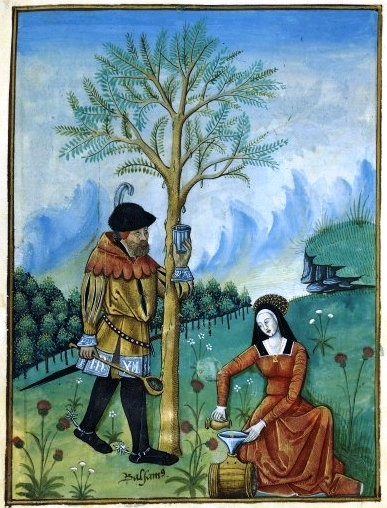 Botanical - Medieval - Horticultural practices - (17)