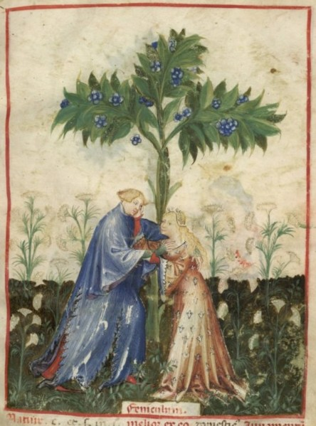 Botanical - Medieval -  Horticultural practices -  (2)