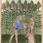 Botanical - Medieval -  Horticultural practices -  (3)