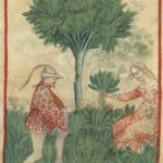 Botanical - Medieval -  Horticultural practices -  (6)