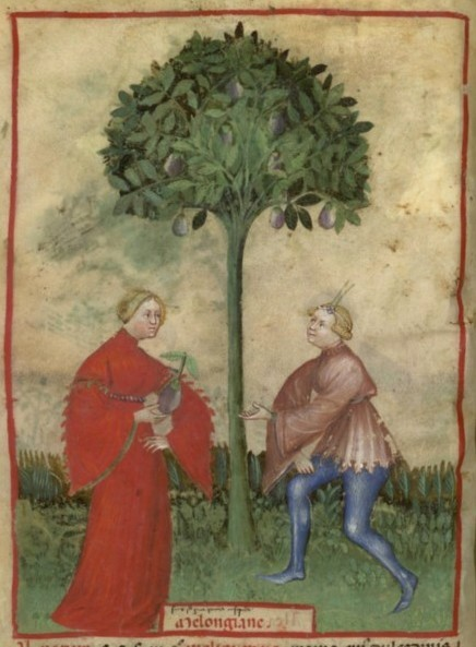 Botanical - Medieval -  Horticultural practices -  (9)