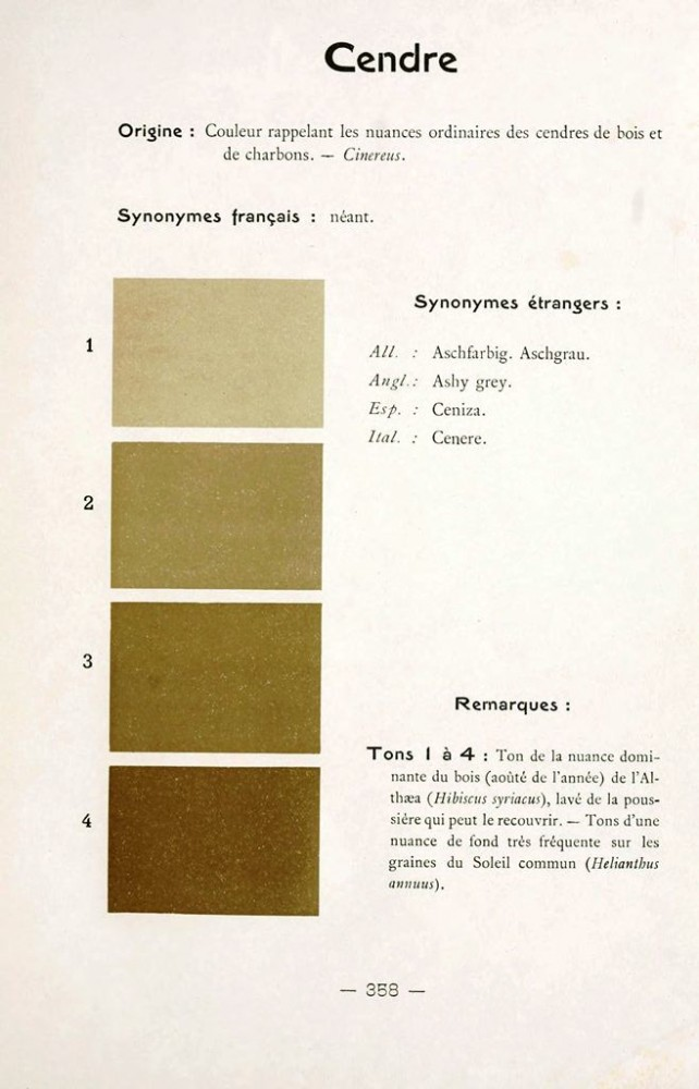 Color - Multi color - French color chart - (100)