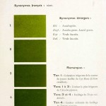Color - Multi color - French color chart - (11)