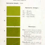 Color - Multi color - French color chart - (14)