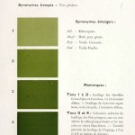 Color - Multi color - French color chart - (19)