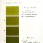 Color - Multi color - French color chart - (31)