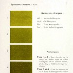 Color - Multi color - French color chart - (32)
