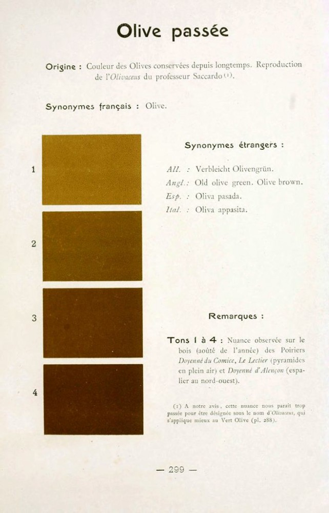 Color - Multi color - French color chart - (41)