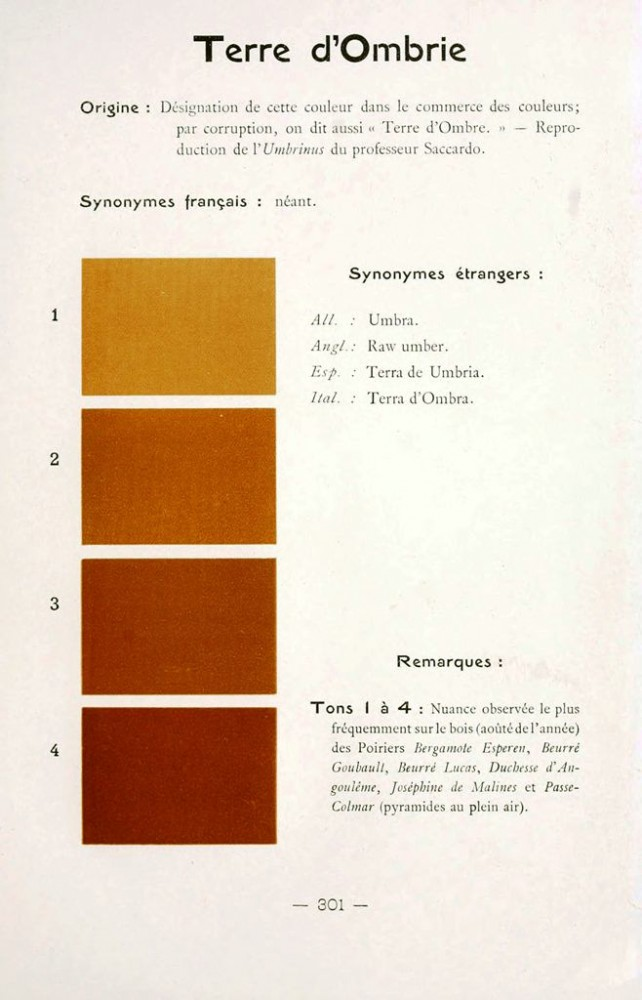 Color - Multi color - French color chart - (43)