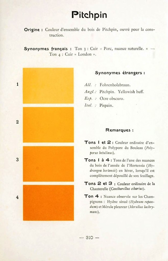 Color - Multi color - French color chart - (52)