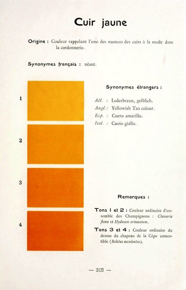 Color - Multi color - French color chart - (57)