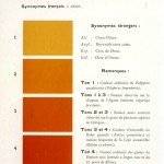 Color - Multi color - French color chart - (64)