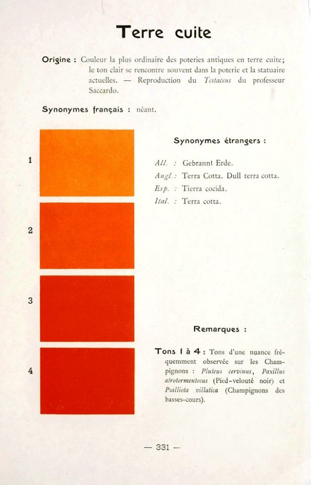 Color - Multi color - French color chart - (73)