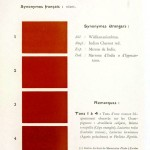 Color - Multi color - French color chart - (75)