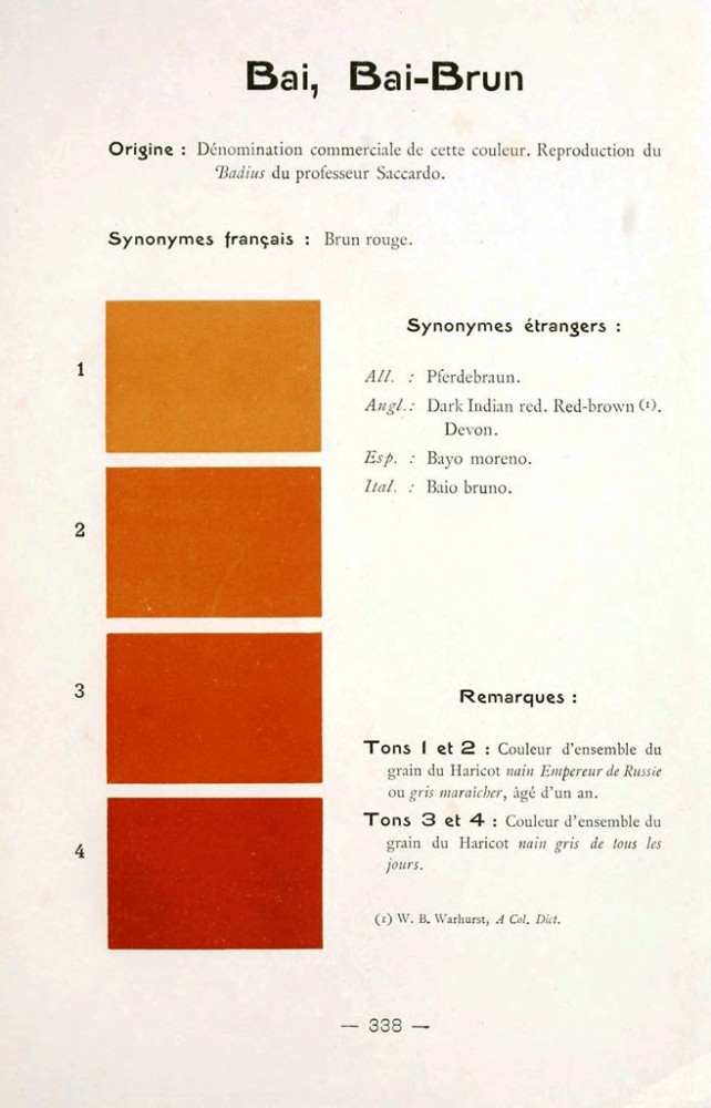 Color - Multi color - French color chart - (80)