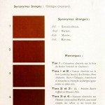 Color - Multi color - French color chart - (83)