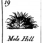 Design - Graphic - Black and white - Mole Hill