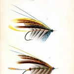 Design - Objects - Salmon flys for fly fishing - blue spots yellow