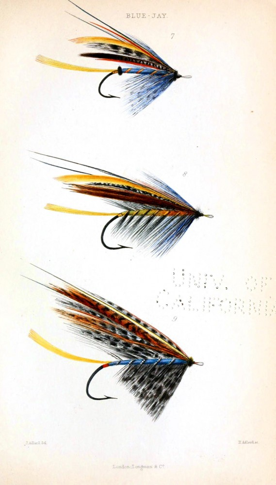 Design - Objects - Salmon flys for fly fishing - brown red  yellow