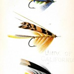 Design - Objects - Salmon flys for fly fishing - yellow black stripe