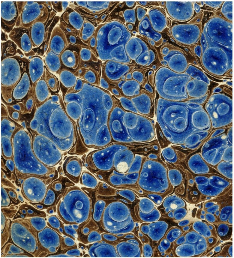 Design - Paper - Marbleized  - Blue  (1)