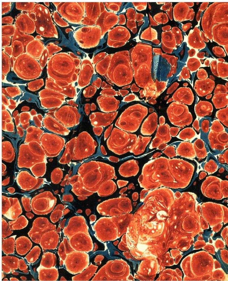 Design - Paper - Marbleized Orange (2)