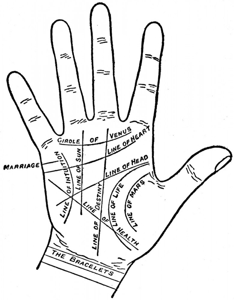 Entertainment - Palmistry map - Palmistry map of palm
