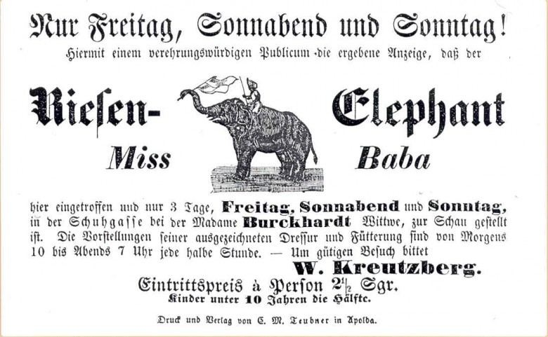 Ephemera - Advertisement - Elefant MissBaba