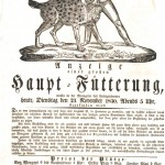 Handbill - Entertainment - Animal Tamer -  (1)