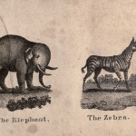 Juvenile - Educational plate - Infants Cabinet of Birds and Beasts (1820) 06 Elephant, Zebra