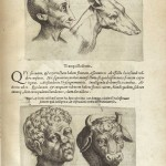 Medical - Anatomy - Physignomia (12)