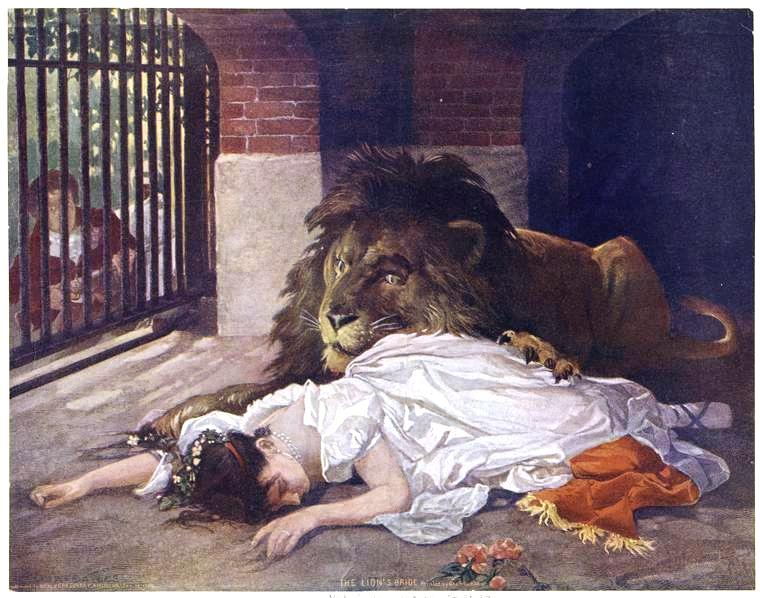 Portrait - Illustration - The lion's bride