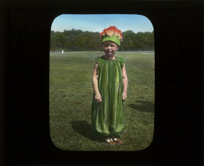 Portrait - Photo - Children in Flower Costumes 1920s (4)