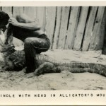 Portrait  - Photo - People with animals - Seminole with head in alligator's mouth